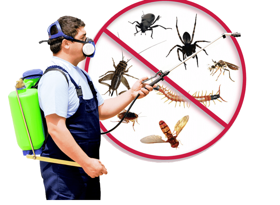 pest-control-kayseri-ilaçlama